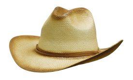 4282  Sprayed Cowboy Straw