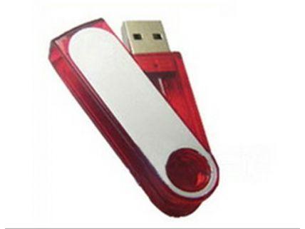 FD80 Flash Drive 80